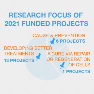 Research focus of 2021 funded projects
